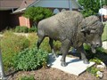Image for City Hall Buffalo - Sulphur, OK