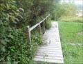 Image for Bridge - Natural Area - Broome Community College (SUNY) - Binghamton, NY