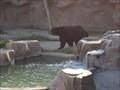 Image for Tijuana Zoo  -  Tijuana, Baja California, Mexico
