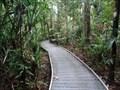Image for Madja Botanical Walk - Queensland, Australia.