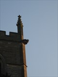 Image for St  Mary's Church  -Grendon ,Northant's
