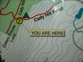 Image for You Are Here - Cady Hill Forest, VT