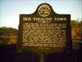 Image for Old Tugaloo Town