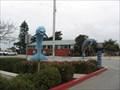 Image for Marina's Dolphins - Marina, CA