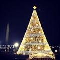 Image for The National Christmas Tree - Washington, D.C.