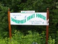 Image for SOMERVILLE TRACT FOREST - Kinmount, Ontario