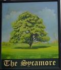 Image for Sycamore - St Albans Road, Watford, Hertfordshire, UK.