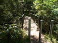 Image for Footbridge - Sheepwash Creek Walking Track, Culburra Beach, NSW