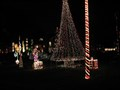 Image for Christmas Lights - Town and Country, MO