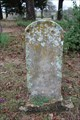 Image for E.J. Hall - Tage Cemetery - Montague County, TX