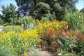 Image for Friendship Island Garden, Potsdam, Germany