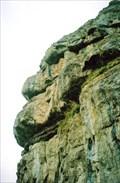 Image for Llandudno, Big nose