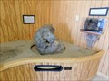 Image for Dolomite Nucleus - Laguna Beach, CA