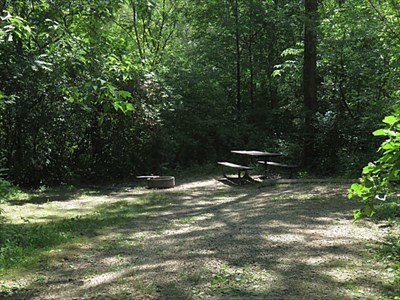 Typical site in main campground at Great River Bluffs State Park