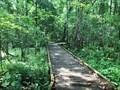 Image for Black Swamp Boardwalk trail - Baton Rouge, LA