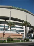 Image for Tropicana Field - St Petersburg, FL
