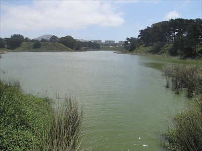 Lake Merced, Looking South, San Francisco, CA