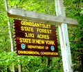 Image for Genegantslet State Forest - McDonough, NY