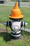 Image for Criminal Hydrant - Ardmore, OK