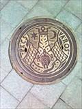 Image for Iron Manhole Cover - Kossuth tér - Pécs