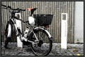 Image for E-Bike Tankstelle - Ulm, BW, Germany