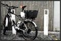Image for E-Bike Tankstelle - Ulm, BW, Germany