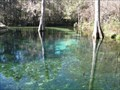 Image for Ponce de Leon Springs State Park, Florida