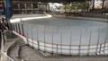 Image for Lilac City Curling Club - Spokane, WA