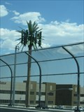 Image for Washington Ave Cell Palm - Las Vegas, NV
