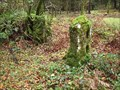 Image for Granite Slotted Gateposts, Longstone Manor, Burrator, SW Dartmoor.
