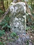 Image for Borne 91, forêt de Fontainebleau - France