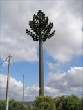 Image for Cell Tree/Tower near old windmill, Avecasta, Ferreira do Zêzere