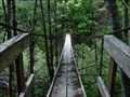 Image for Pacific Marine Route Suspension Bridge - Hillcrest Mainline Rd, BC