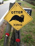Image for Otter Crossing
