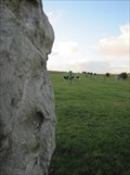 Image for West Kennet Avenue - Avebury, Wiltshire