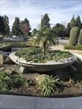 Image for City Hall Palm Tree Planter - Fountain Valley, CA