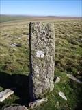 Image for The Bedford Stones, Roos Tor, North Dartmoor, Devon