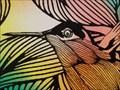 Image for Hummingbirds - Oklahoma City, OK
