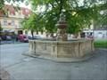 Image for kašna / fountain Slaný, Czech republic