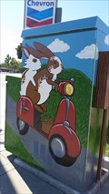 Image for Bunnies - Campbell, CA