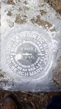 Image for MW0258 - USC&GS 'V 603' BM - Modoc County, CA