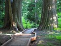 Image for Lost Lake Boardwalk, Oregon