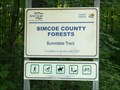 Image for Sunnidale Tract, Simcoe County Forests - Clearview Township, Ontario