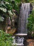 Image for Pangani Forest Gorilla Falls