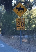 Image for Horse and Rider Crossing - San Jose, CA