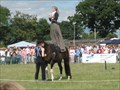 Image for Frogham Fair - New Forest, Hampshire, UK