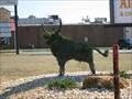 Image for The Braggin' Bull - Vienna, GA
