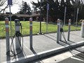 Image for Rinconada  Library Chargers - Palo Alto, CA