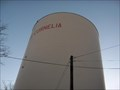 Image for Cornelia water towers on Chenocetah mtn.