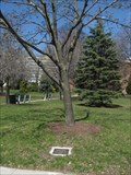 Image for Richard J. Conners - Albany, New York